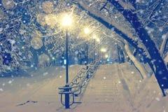 Nachtlandschaft im Winterpark Lizenzfreies Stockfoto
