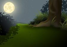 Nachtlandschap Royalty-vrije Stock Afbeeldingen