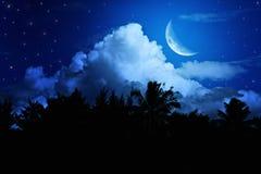 Nachtlandschap met de maan Royalty-vrije Stock Afbeeldingen