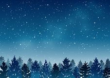 Nachtlandschap met naaldbos Stock Afbeeldingen