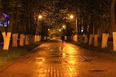 Nachtlandschap in St. Petersburg Stock Foto's