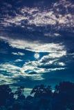 Nachtlandschap van hemel met donkere bewolkt en volle maan boven silhouetten van bomen op de bosachtergrond van de Sereniteitsaar stock foto's