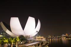 Nachtleben in Singapur Stockbilder