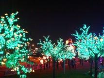 Nachtlicht-Show Lizenzfreies Stockfoto