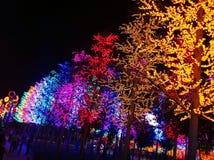 Nachtlicht-Show @ iCity lizenzfreies stockfoto