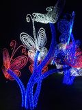 Nachtlichten Royalty-vrije Stock Foto