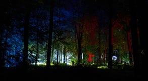 Nachtlichter zeigen ` Inspiration ` im Ostankino-Gartenstadtpark Hunderte von den Lichtern im Wald, der Licht 3d und Laser-illumi Stockfotos