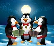 Nachtlied van pinguïnen Stock Afbeeldingen
