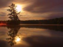 Nachtmening aan eiland met boom hierboven - waterspiegel Volle maan Royalty-vrije Stock Fotografie