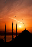 Nachtmening van moskee, Istanboel Royalty-vrije Stock Afbeeldingen