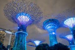 Nachtmening van Super boombosje bij Tuinen door de Baai Het overspannen van 101 hectaren teruggewonnen land in centraal royalty-vrije stock foto