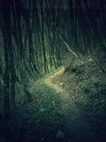 Nachtmerrielandschap Stock Afbeeldingen