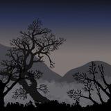 Nachtnatürlicher Hintergrund Lizenzfreies Stockbild