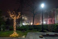 Nachtpanorama van de Centrale Straat met Kerstmisdecoratie in stad van Plovdiv, Bulgari Stock Afbeeldingen