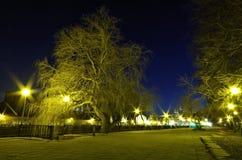 Nachtpark Lizenzfreie Stockfotos