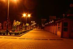 Nachtpark Truskavets stockfotografie