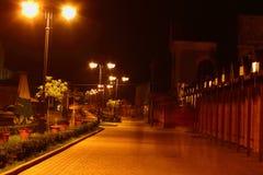 Nachtpark Truskavets stockbilder