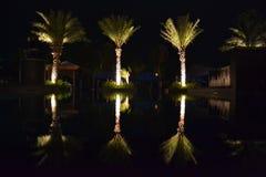 Nachtreflexionen Stockbilder