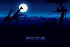 Nachtsafari royalty-vrije illustratie