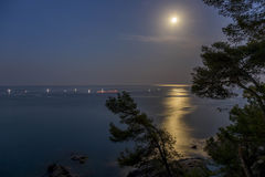 Nachtscène over de oceaan met maan Royalty-vrije Stock Foto's