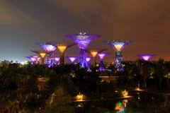 Nachtscène van tuinen door de baai in Singapore Stock Foto