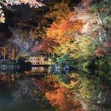 Nachtscène, verlichting in de Engelse tuin van Kenroku in Kanazawa stock afbeeldingen