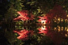 Nachtscène, verlichting in de Engelse tuin van Kenroku in Kanazawa royalty-vrije stock fotografie