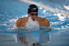Nachtschwimmen-Cup F.-Scozzoli (Italien) Aspria Lizenzfreie Stockbilder