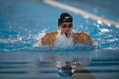 Nachtschwimmen-Cup Mailand Fabio-Scozzoli Aspria Lizenzfreies Stockbild