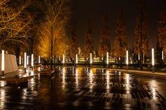 Nachtstadtpark in der Stadt von Krasnodar, Russland Der Park wird in der gleichen Entwurfsart gemacht und viel Geometrie enthält  lizenzfreie stockfotografie