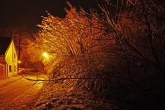 Nachtstraat met bomen en lampen in de winter stock fotografie