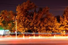 Nachtstraat met vaag verkeerslicht Royalty-vrije Stock Foto
