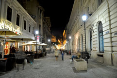 Nachtszene Lizenzfreie Stockfotos