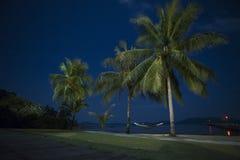 Nachtstrand en palmen Stock Fotografie