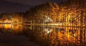 Nachtszene auf dem See mit Baumreflexion im Wasser Lizenzfreie Stockfotografie