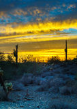 Nachtszene Phoenix Arizona nach Sonnenuntergang Stockfotos