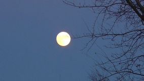 Nachtvollmondbewegung im Himmel stock video