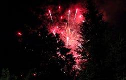 Nachtvuurwerk Stock Afbeelding