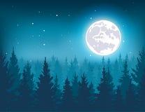 Nachtwald in der Winterillustration Lizenzfreies Stockfoto