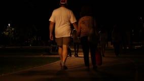 Nachtweg im Park stock video