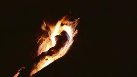Nachtzeit-Feuer auf hölzernen Klotz stock video