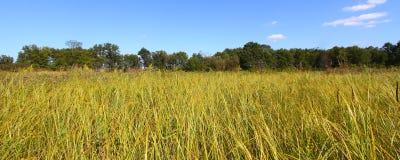 Nachusa Grasslands in Illinois Stock Photo