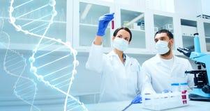 Nachwuchswissenschaftler, die Test oder Forschung im Labor machen stockbilder