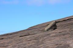 Nachylająca skała w Zaczarowanym Rockowym stanu parku obrazy stock