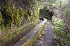 Nacientes Marcos y Cordero - beautiful trail on the island La Pa Royalty Free Stock Photo