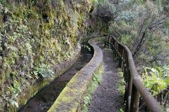 Nacientes Marcos y Cordero - beautiful trail on the island La Pa Stock Image