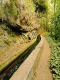 Nacientes Marcos y Cordero Trail, La Palma Stock Photography