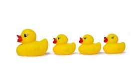 Nacimiento del pato de goma Imagen de archivo libre de regalías