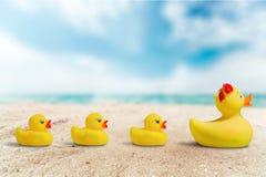 Nacimiento del pato de goma Fotos de archivo