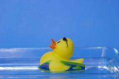Nacimiento del pato de goma Fotos de archivo libres de regalías